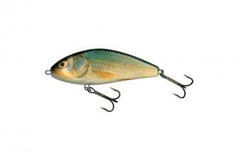 Salmo fatso floating real roach 10 cm