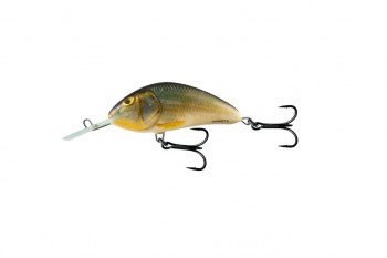 Salmo hornet floating real roach 9 cm