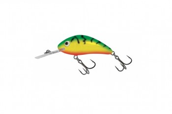 Salmo rattlin hornet green tiger