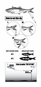 Spro doodaastakel langeafstand zachte aasvissen